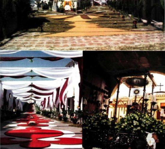 thumbnail of 2005_08_Boletin_Agosto_2005_compressed